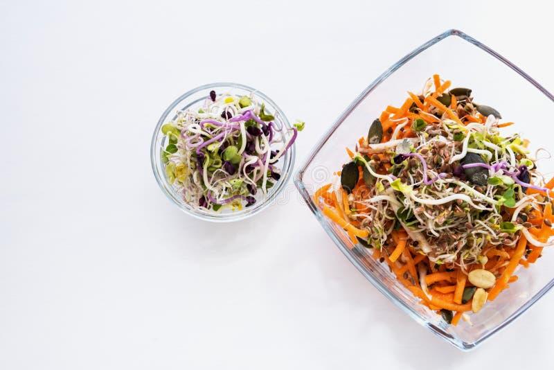 Sund mat - frö, groddar och morötter Vit bakgrund royaltyfri bild
