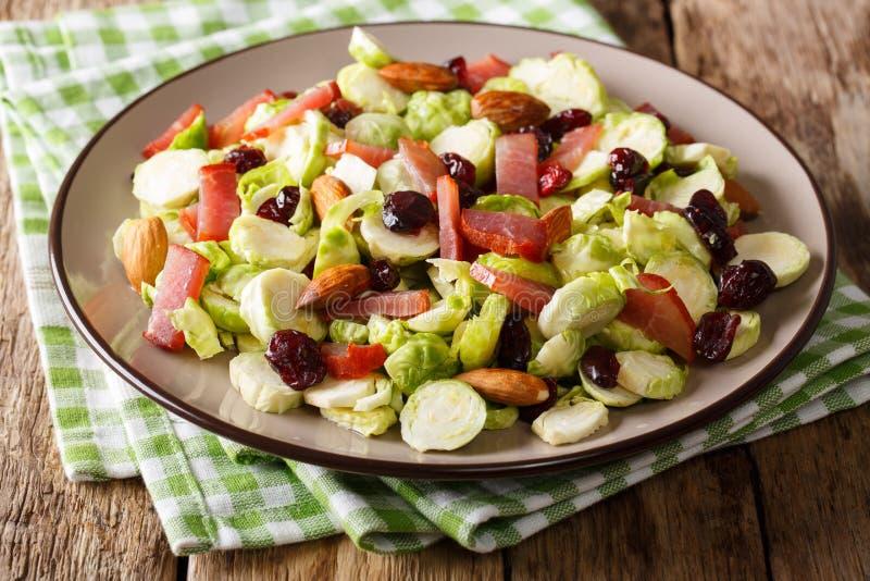 Sund mat: sallad från Bryssel groddar, tranbär, mandlar arkivbild