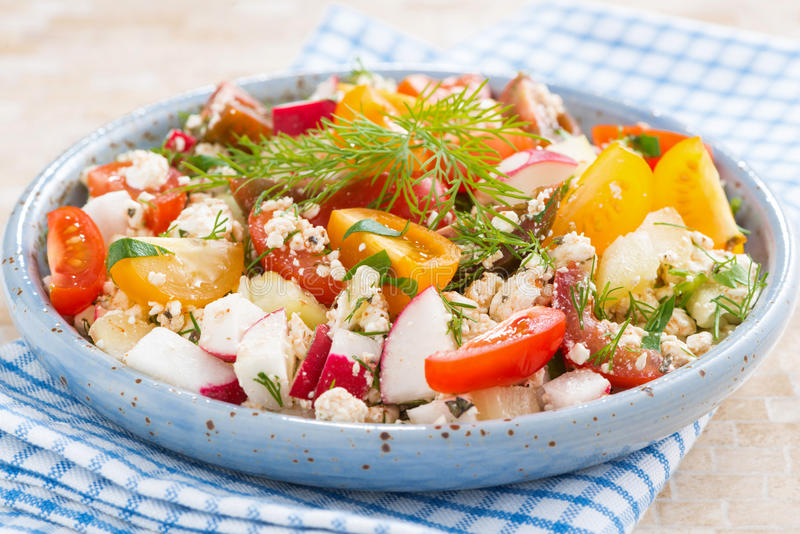 Sund mat - sallad med nya grönsaker och keso arkivbild
