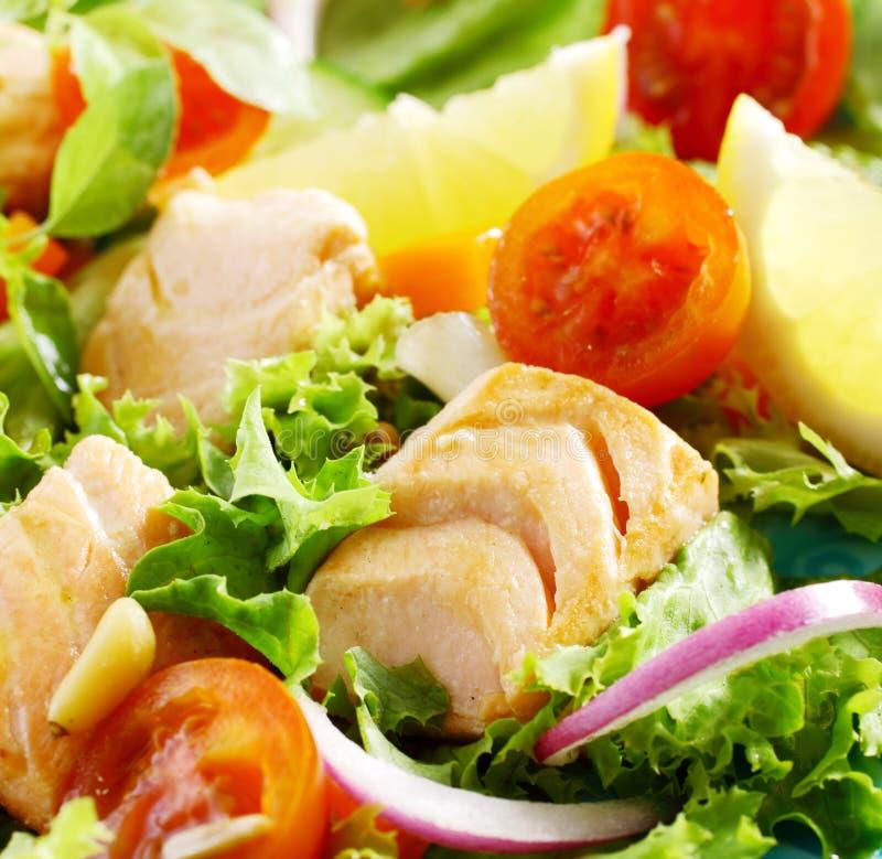 Sund medelhavs- sallad med höna arkivbild