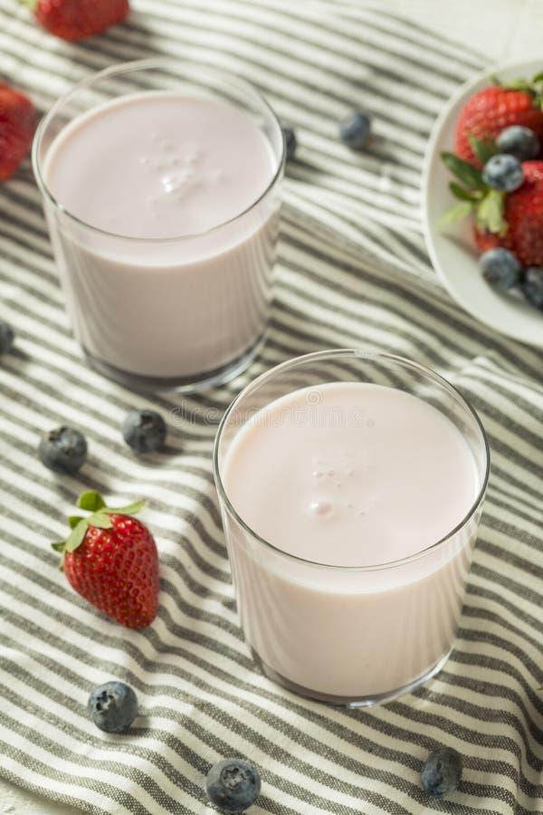 Sund organisk drickbar yoghurt Berry Kefir fotografering för bildbyråer