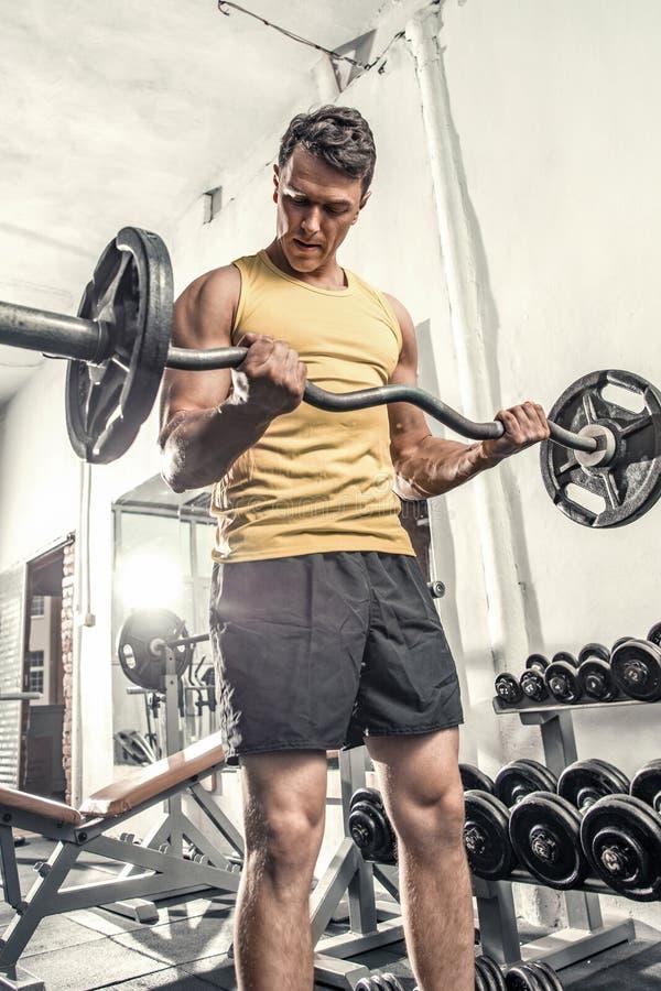 Sund praktiserande biceps för ung man som lyfter en krullningsstång arkivfoto