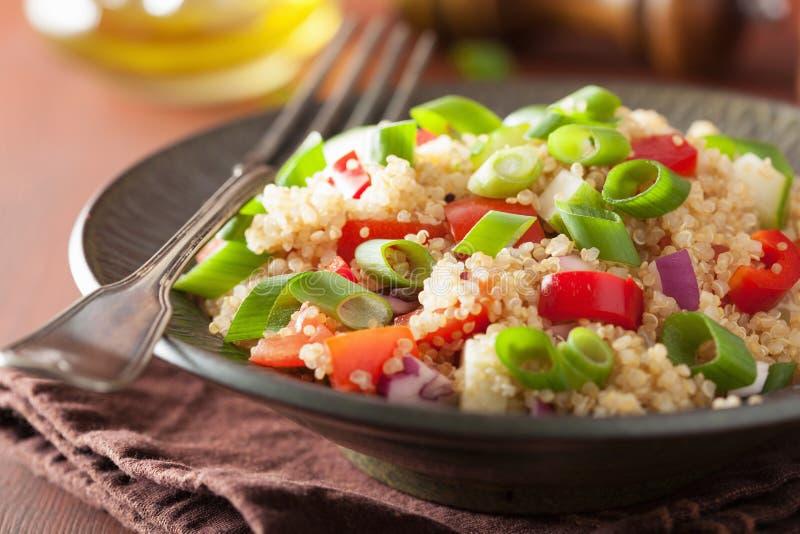 Sund quinoasallad med gräslökar för tomatgurkalök royaltyfri bild