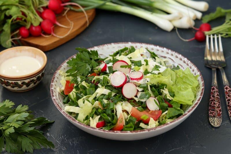 Sund sallad med nya grönsaker: rädisa, gurkor, salladslökar, persilja, tomater, kål och spenat royaltyfri foto