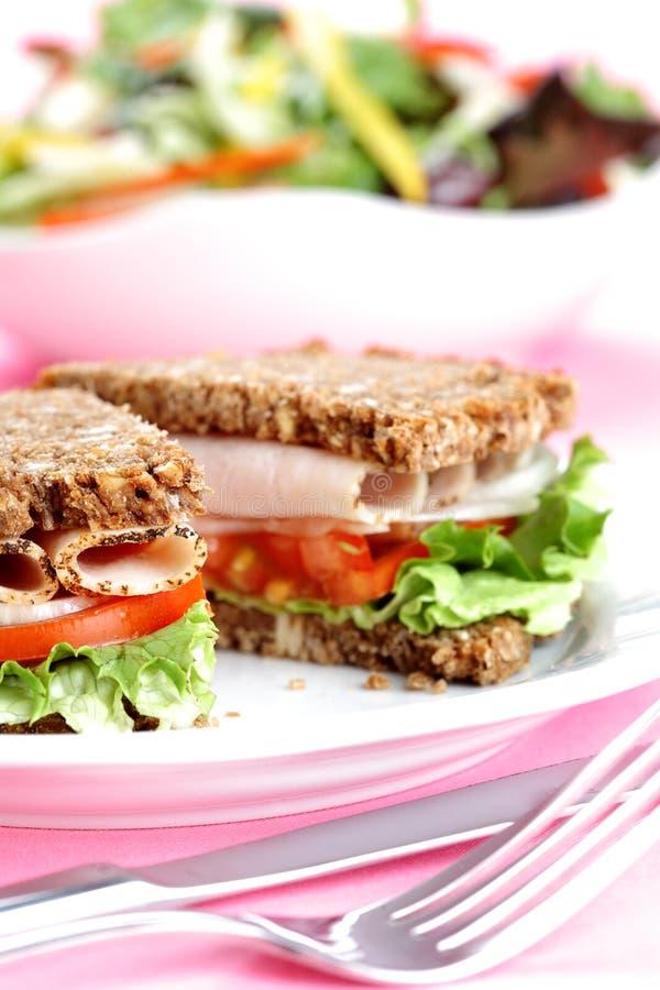 sund smörgås arkivbild