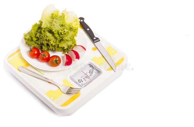 Sund viktförlust royaltyfri foto