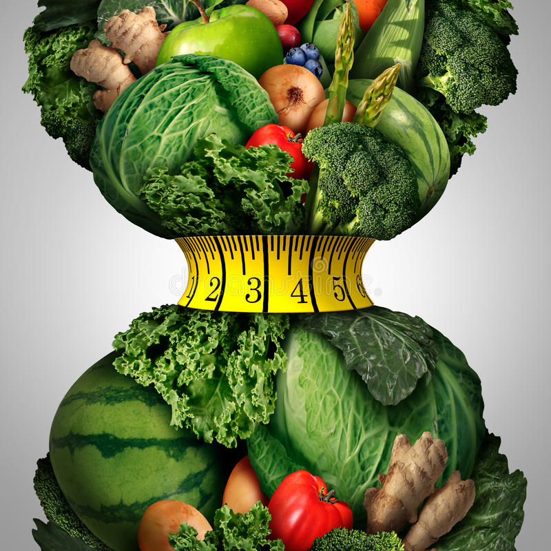 Sund viktförlust bantar stock illustrationer
