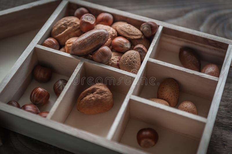 Sunda blandningmuttrar på träbakgrund Valnöt, hasselnöt, mandel och pecannöt arkivbild