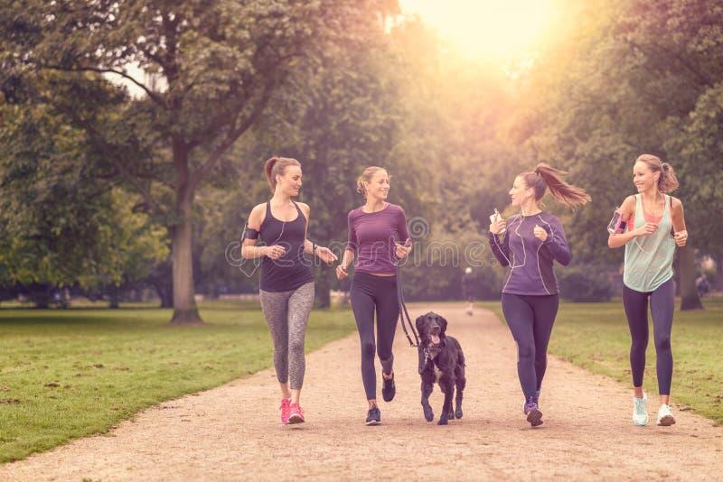 Sunda kvinnor som joggar på parkera med en hund arkivfoto