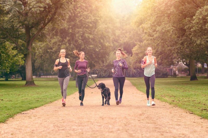 Sunda kvinnor som joggar på parkera med en hund arkivbilder