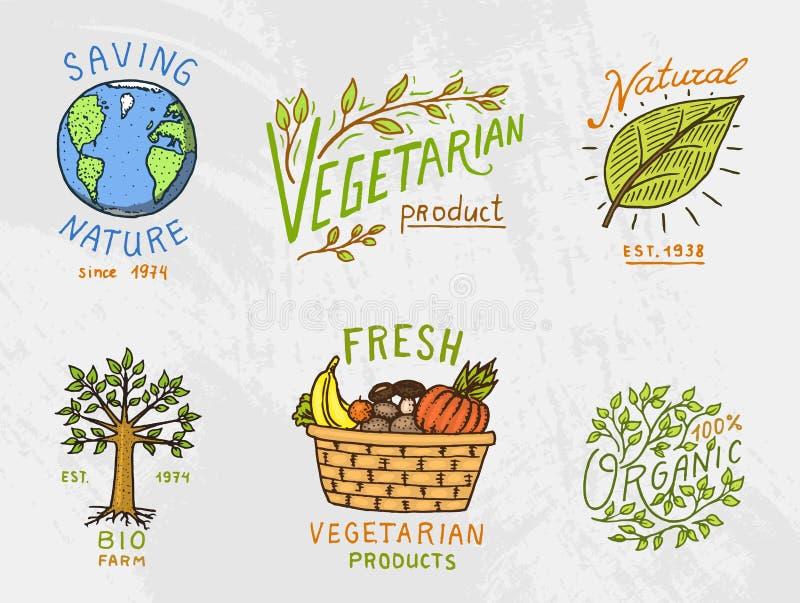 Sunda logoer för organisk mat ställde in eller etiketter och beståndsdelar för gröna naturliga grönsakprodukter för vegetarian oc royaltyfri illustrationer