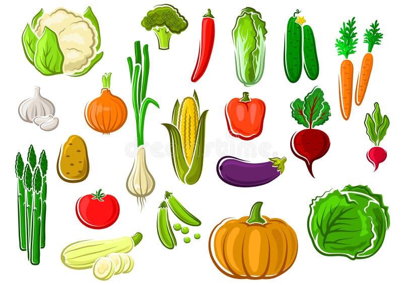 Sunda nya mogna isolerade lantgårdgrönsaker vektor illustrationer