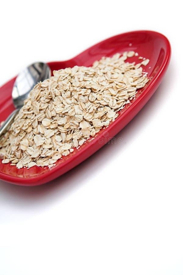 sunda oats royaltyfri foto