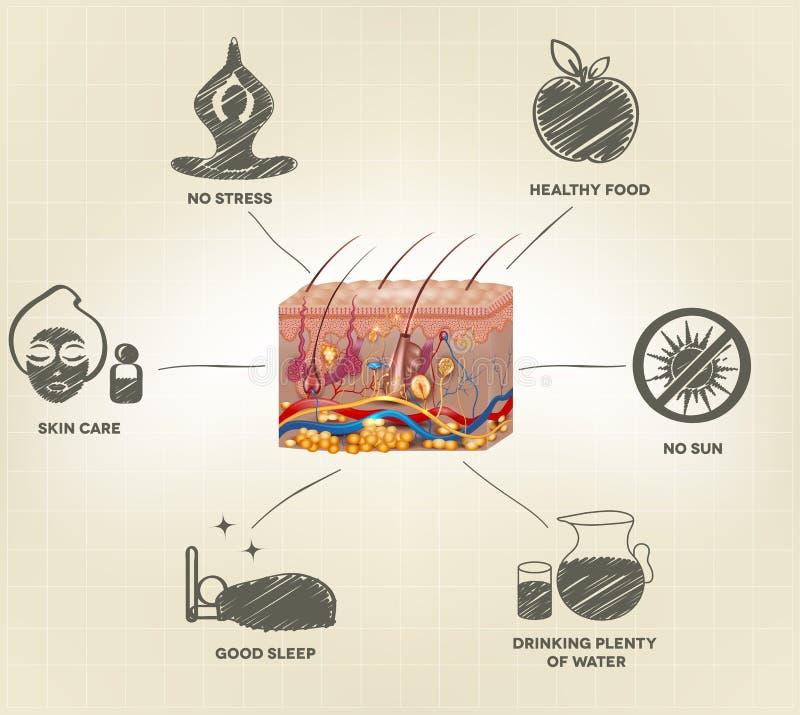 Sunda rådgivning för hudomsorg royaltyfri illustrationer