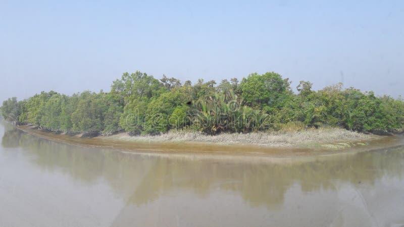 Sundarban στοκ εικόνα με δικαίωμα ελεύθερης χρήσης