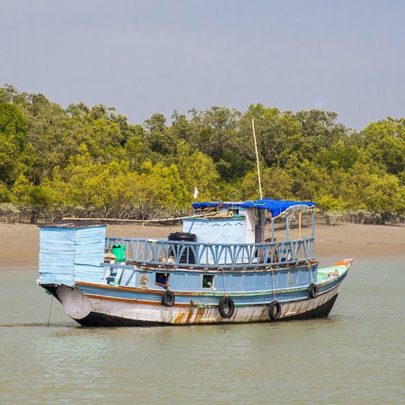 Sundarbans obraz stock