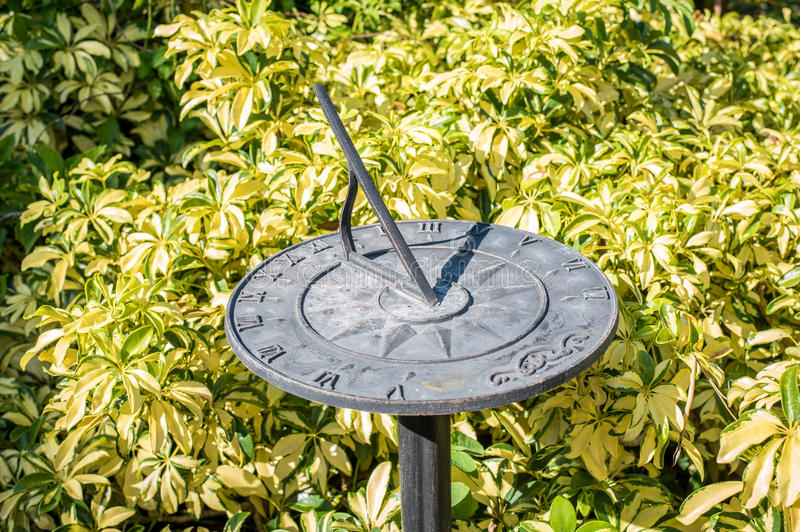 Sundial. In field of bushes royalty free stock photos