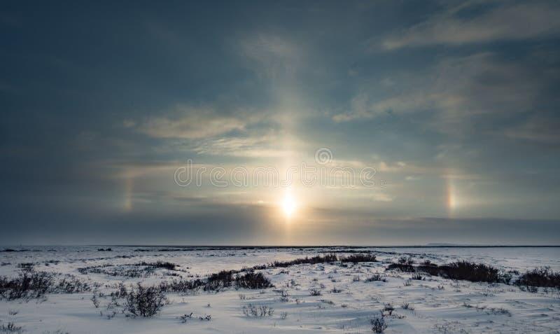 Sundog sobre o tundraSunset sobre o curso bonito e colorido da tundra da noite do fundo do inverno fotos de stock royalty free