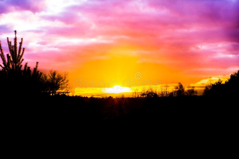 Sundown in a heather landscape with pink nacreous clouds, a rare and colorful weather effect in the sky royalty free stock photography