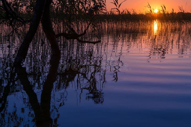 Sundown lake stock images