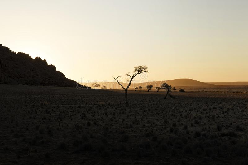 Sandy dune and dried dead trees in a Namibian desert, Namib Naukluft national park, Namibia stock image