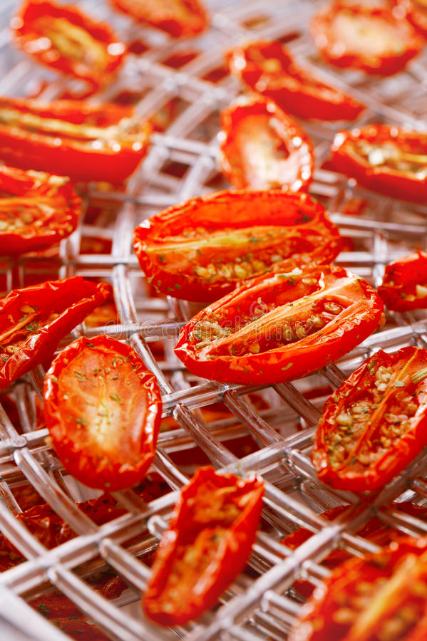 Sundried cherry tomatoes on food dehydrator tray royalty free stock photos