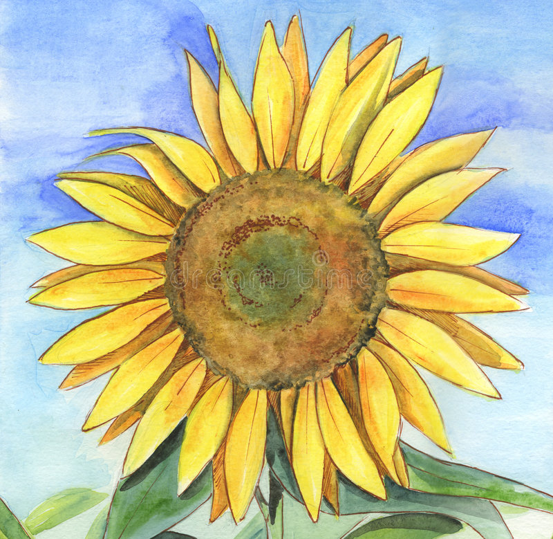 Sunflower Painting Stock Photography