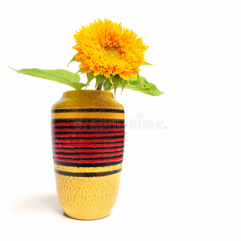 Free Sunflower Stock Image - 15871001