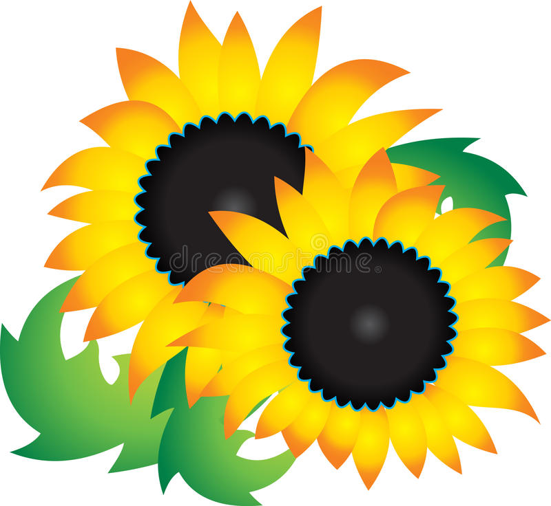 Download Sunflower Stock Image - Image: 18947131