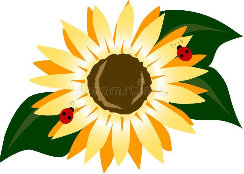 Download Sunflower stock illustration. Illustration of seeds, flower - 199514