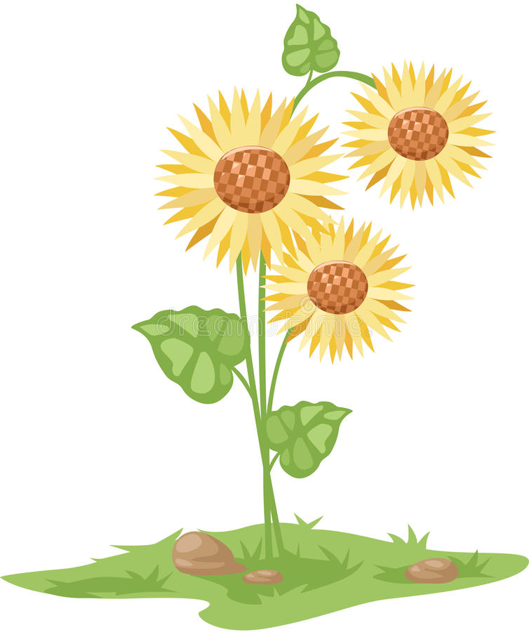 Download Sunflower stock vector. Illustration of colorful, object - 28289885