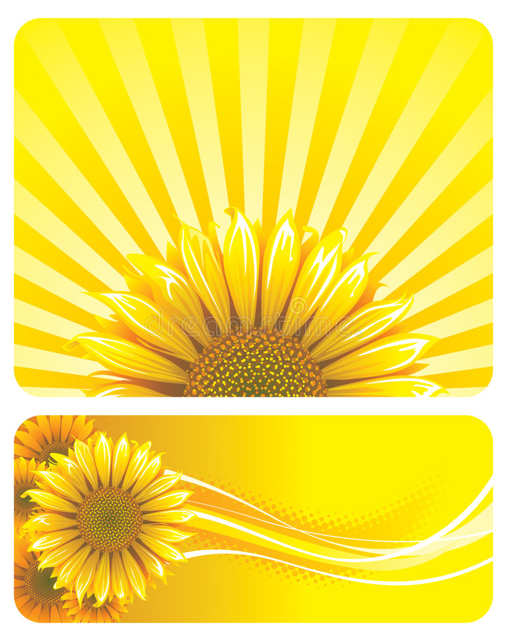 SUNFLOWER royalty free illustration