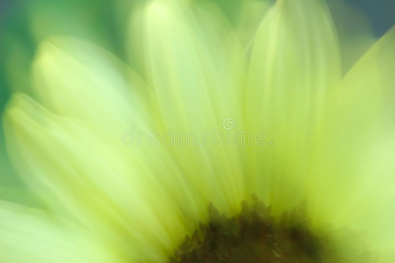 Download Sunflower Abstract Stock Photos - Image: 2475803