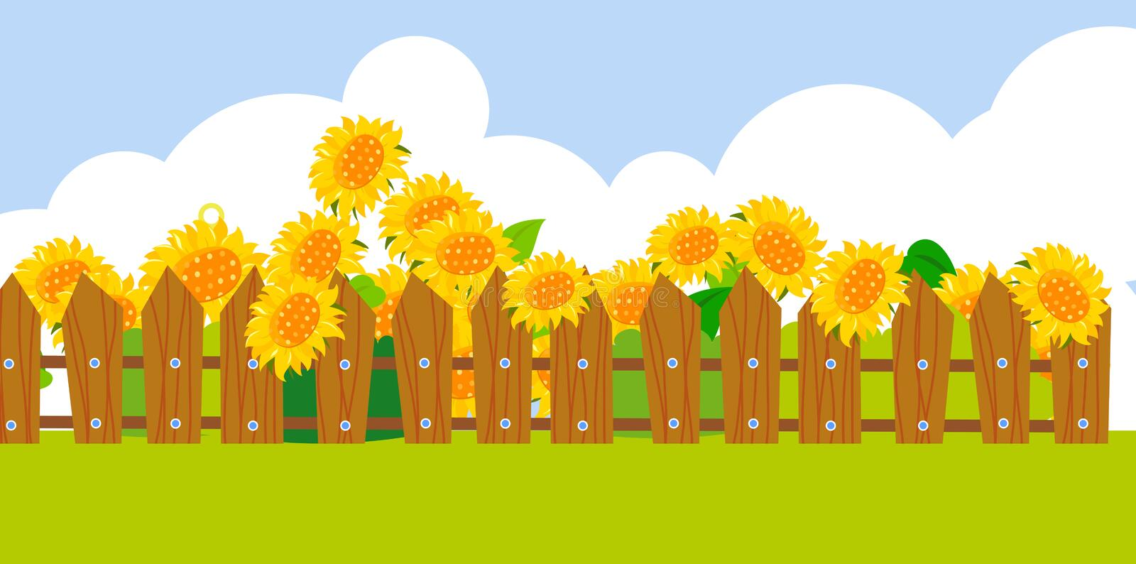 Download Sunflower background stock vector. Image of agriculture - 38423949