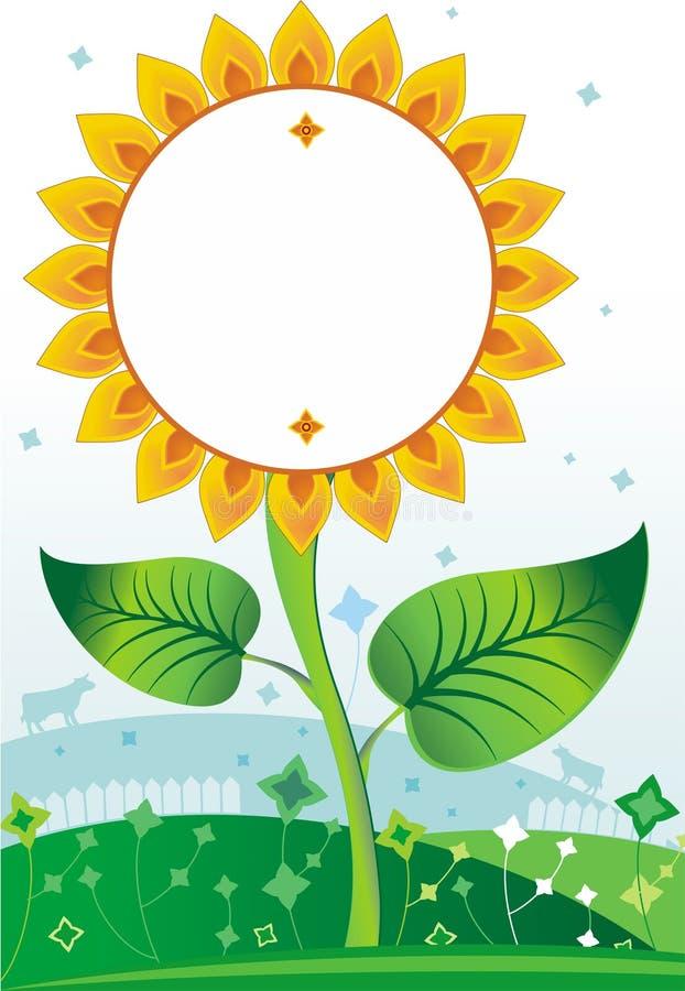 Sunflower background1