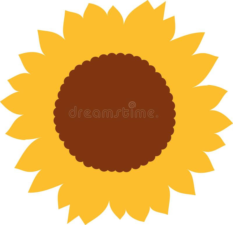 Sunflower blossom vector vector illustration