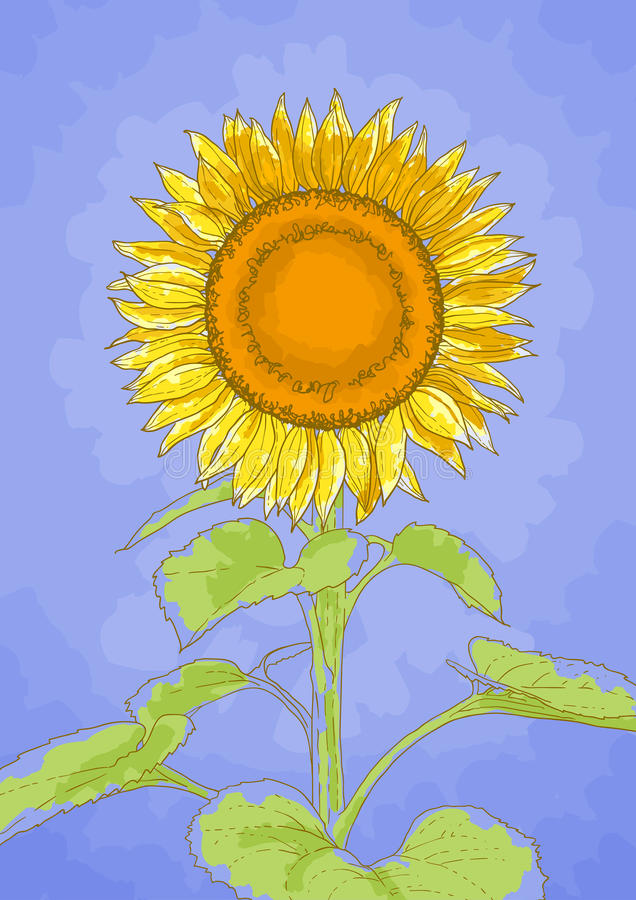 Download Sunflower And Blue Sky Royalty Free Stock Image - Image: 23876006
