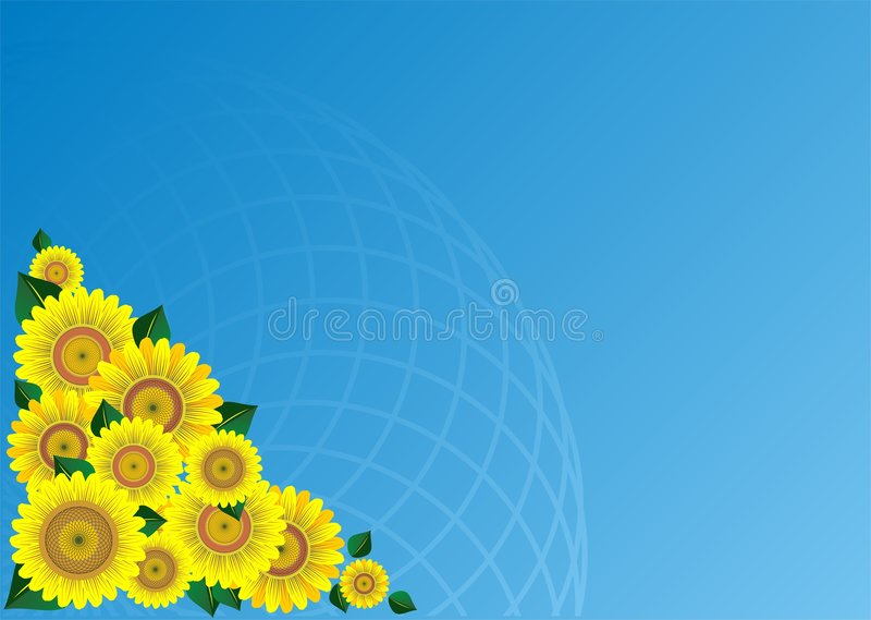 Sunflower. Border vector illustration