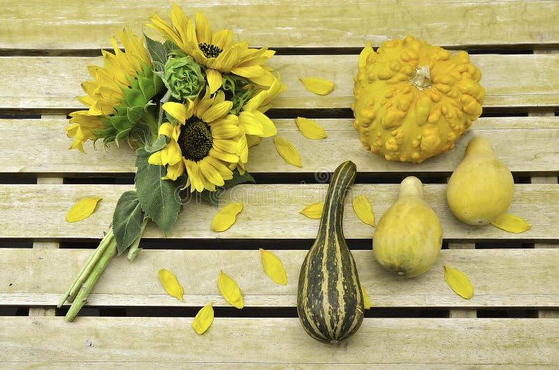 Sunflower bouquet and pumpkins stock photo