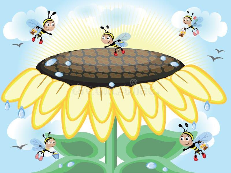 Download Sunflower CMYK stock vector. Illustration of background - 17929623