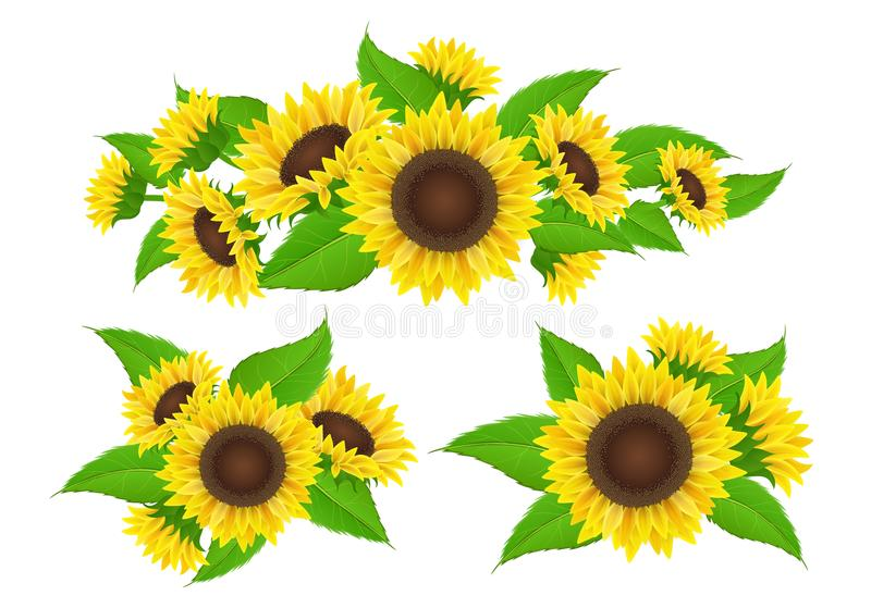 Sunflower collection for banner and bouquet royalty free illustration
