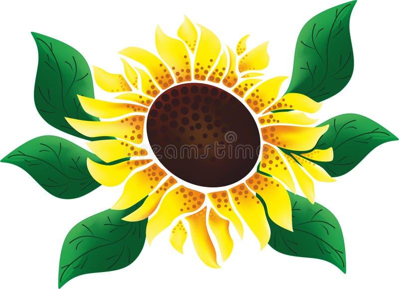 Sunflower 2 vector illustration