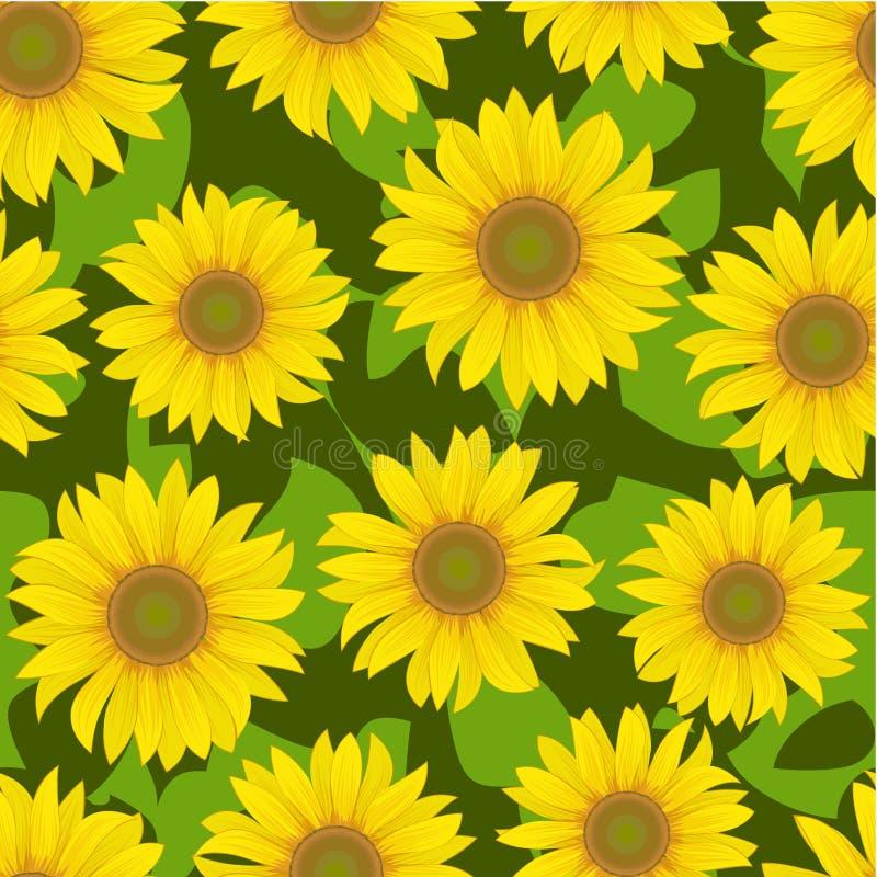 Sunflower flower seamless background vector illustration