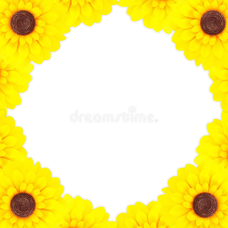 Download Sunflower frame stock image. Image of background, happy - 21019663