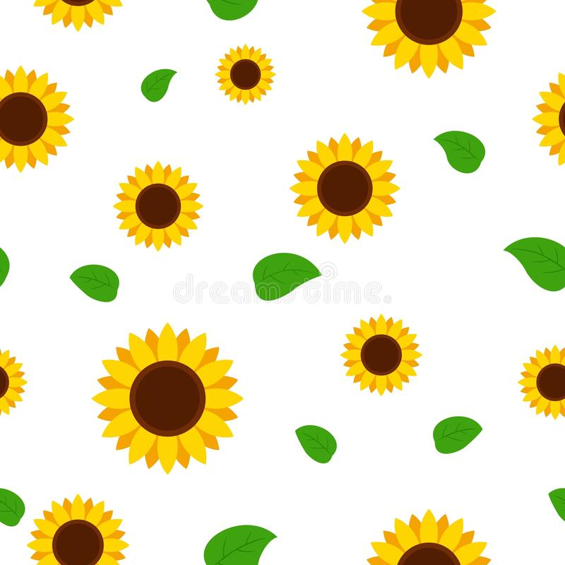 Sunflower with green leaves seamless pattern. Sunflowers on white background vector illustration