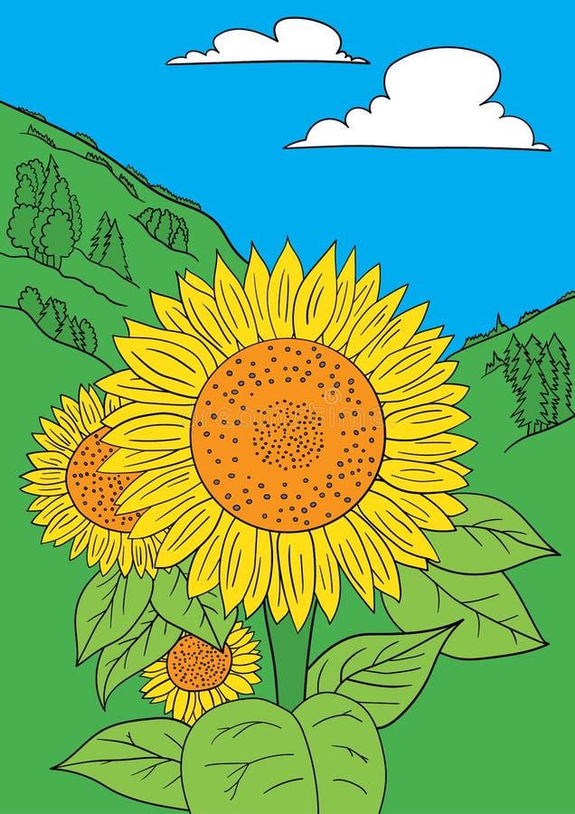 Sunflower vector vector illustration