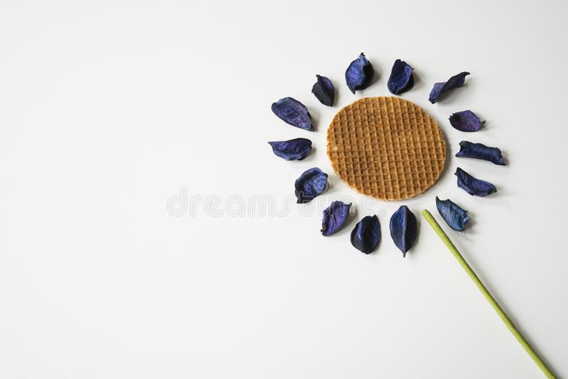 Sunflower made of traditional dutch syrup cookie, stroopwafel, on white table, with purple dry leaves. copy space royalty free stock photography