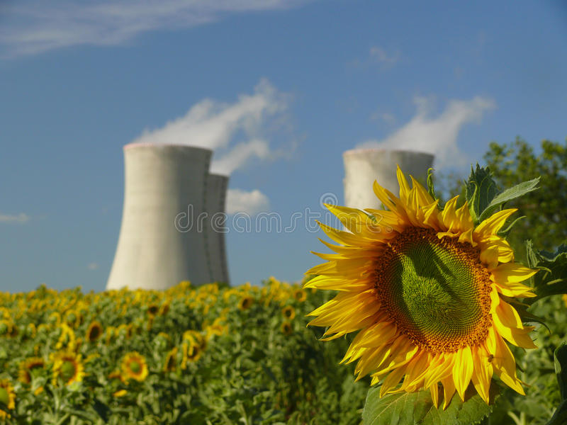 Download Sunflower With Nuclear Power Station Stock Image - Image: 20412185