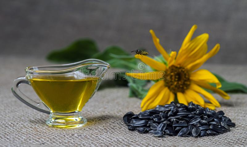 Sunflower oil in a glass gravy boat and a handful of sunflower seeds on the background of burlap and sunflower. Flying wasp royalty free stock photo