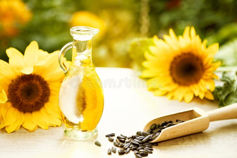 Sunflower oil, sunflower seeds and blossom sunflower. Sunflower oil in small glass jar, sunflower seeds and sunflower blossom on wooden table stock photo